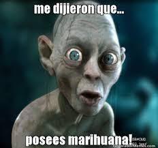 Memes De Marihuanos - chistes para los fumones humor taringa