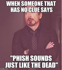 Phish Memes - face you make robert downey jr meme imgflip