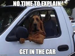 No Time To Explain Meme - dog in truck imgflip