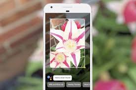 Google Snapshots July August 2017 Snapshots Google Lens Facebook U0027s Deep Learning