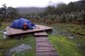 tassie tent platforms