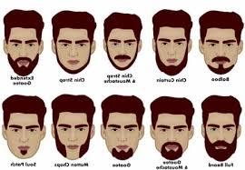 mens haircuts chart mens hairstyles beard stock photos royalty free images amp vectors