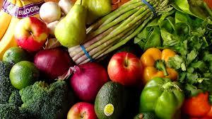 nutrition and the vegan diet i love vegan