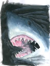 great white shark sketch by phoenixangel924 on deviantart
