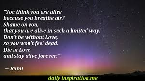 quote love poem download rumi love quotes homean quotes