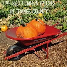 2014 family halloween events in orange county oc mom blog