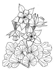 Coloriages de printemps les fleurs muguet narcisses tulopes