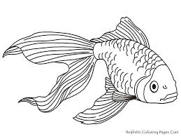outstanding coloring pages fish coloring pages free coloring