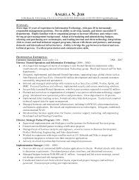 Engineering Project Manager Resume Sample It Director Resume Samples Resume For Your Job Application