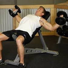 How Much Does A Bench Bar Weigh German Volume Training