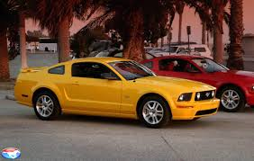 Mustang Yellow And Black Photos Or Photo Chop Of Screaming Yellow Gt With White Or Black