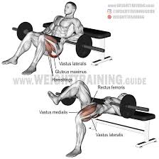 barbell archives weight training guide