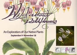 list of native plants lloyd library and museum linkedin