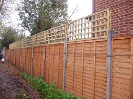 trellis over fence fl vines pinterest garden fencing and gardens
