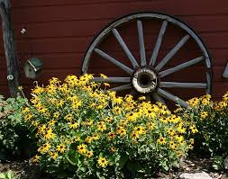 156 best wheelbarrows u0026 wagons in the garden images on pinterest