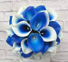 blue lilies royal blue picasso calla wedding by brideinbloomweddings