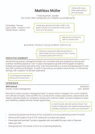 resume executive summary what is text resume free resume example and writing download international resume for senior managers resume2 best