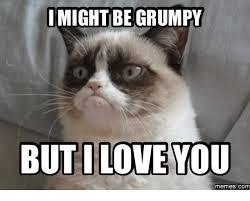 I Have A Crush On You Meme - 40 funny i love you meme sayingimages com