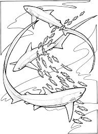 free coloringpages fish ocean sharks
