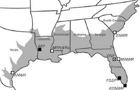 alligators in map 1 geographic locations of alligator study