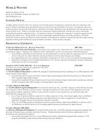exles of a summary on a resume resume summary exles entry level templates for