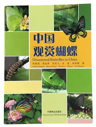 ornamental butterflies in china history books