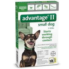 Small 2 by Advantage Ii For Dogs Entirelypets