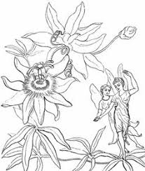 pin paula st john coloring pages precious