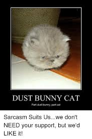 Sarcastic Cat Meme - dust bunny cat part dust bunny part cat sarcasm suits uswe don t