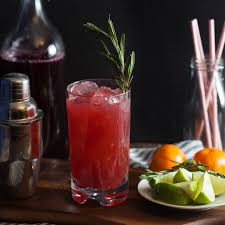 sparkling cranberry clementine gin cocktails with rosemary honey