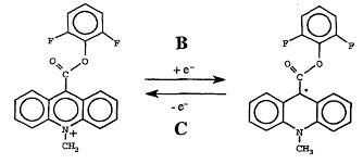patent ep1322670b1 electrochemiluminescence from acridan