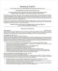 Vp Finance Resume Examples Finance Executive Resume Executive Resume Example Executive
