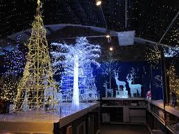 christmas displays picture of barton grange preston tripadvisor