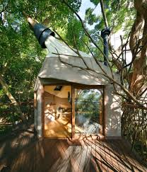 japan u0027s largest treehouse is a sprawling structure built around a