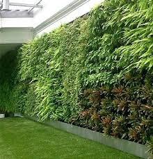 Ebay Vertical Garden - wall garden ideas wall garden kits ebay hydroponic wall garden diy
