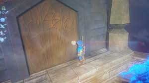botw climbed to the top of hyrule castle and found some wood