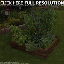 above ground gardens vegetables home outdoor decoration