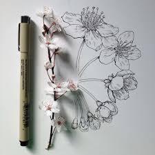 27 tips for drawing flowers plants u0026 nature digital arts