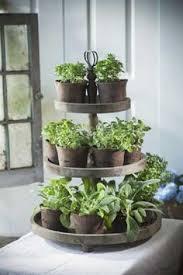 Indoor Herb Garden Ideas by Easy Indoor Herb Garden Simple 10 Minute Diy Project Indoor