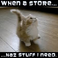 Funny Gifs And Memes - great cats be funny blog