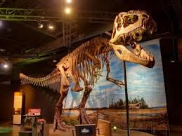 perot museum presents ultimate dinosaurs event culturemap dallas