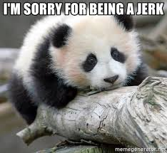 Memes About Being Sorry - i m sorry for being a jerk sad panda meme generator