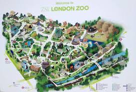 National Zoo Map Monkey Business At The London Zoo Life In London