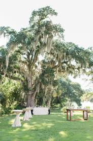 wedding venues in carolina 36 best wedding venues south carolina images on