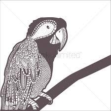 decorative parrot design vector image 1544110 stockunlimited