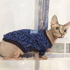 sphynx sweaters sphynx cat sweater for winter 4 colors