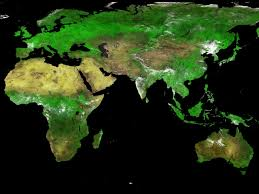 India Satellite Map by The First Global Map Of Vegetation From The Proba V Satellite