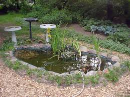 backyard landscaping with small pond ideas handbagzone bedroom ideas