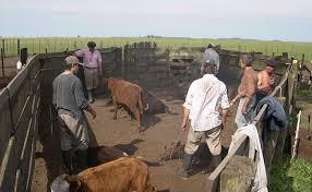 uatre nueva escala salarial para los trabajadores agrarios la uatre dio a conocer la nueva escala salarial para trabajadores