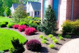 large side yard landscaping ideas soware club